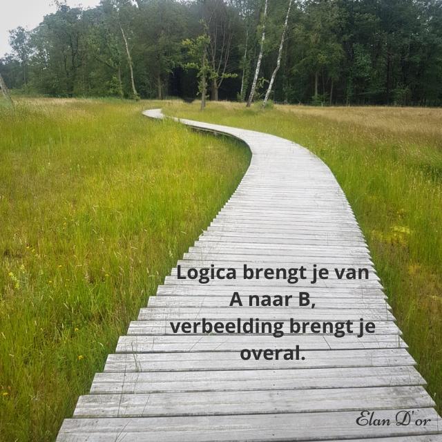 Logica brengt je van A naar B, verbeelding brengt je overal